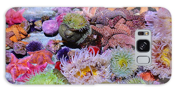 Galaxy Case featuring the photograph Pacific Ocean Reef by Kyle Hanson