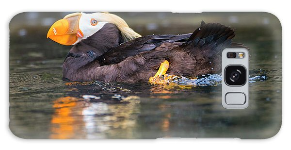 Puffin Galaxy S8 Case - Paddling Puffin by Mike Dawson