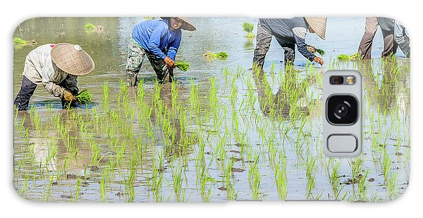 Paddy Field 1 Galaxy Case by Werner Padarin