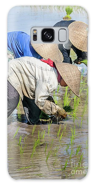 Paddy Field 2 Galaxy Case by Werner Padarin