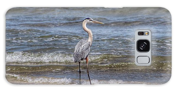Padre Island National Seashore Galaxy S8 Case - Padre Island National Seashore  by Linda Anderson