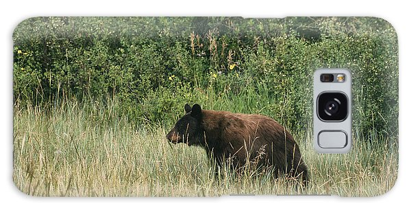 Pagosa Momma Bear Galaxy Case