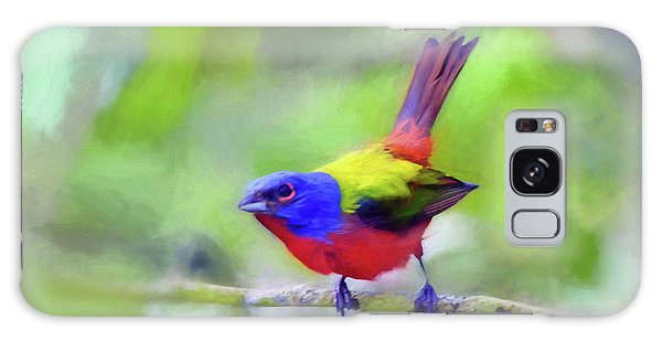 Painted Bunting Galaxy Case