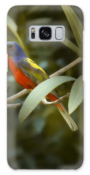 Painted Bunting Male Galaxy Case