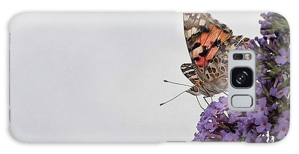 Galaxy Case - Painted Lady (vanessa Cardui) by John Edwards