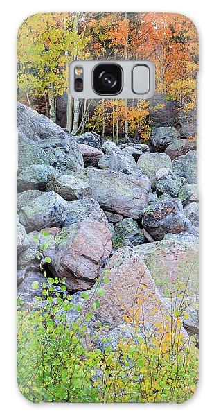 Painted Rocks Galaxy Case