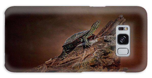 Painted Turtle Galaxy Case