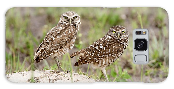 Pair Of Burrowing Owls Galaxy Case