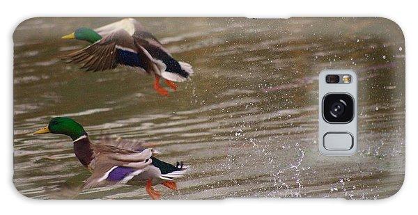 Pair Of Ducks Galaxy Case