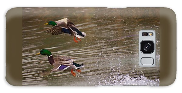 Pair Of Ducks Galaxy Case