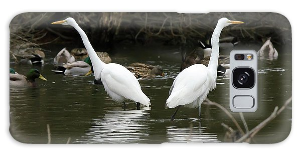 Pair Of Egrets Galaxy Case by George Randy Bass