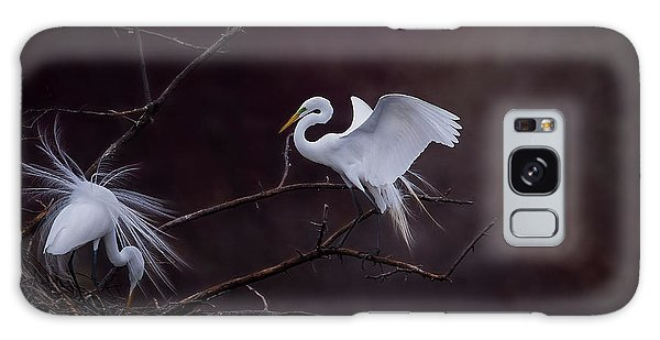 Pair Of Egrets Galaxy Case