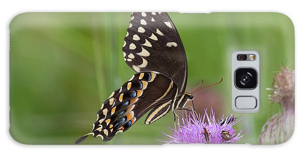 Palamedes Swallowtail And Friends Galaxy Case