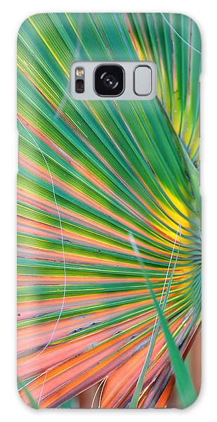 Palm Colors Galaxy Case by Jan Amiss Photography