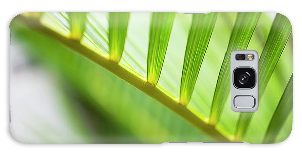 Palm Greenery Galaxy Case