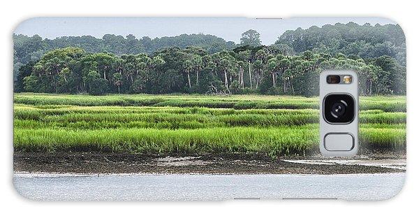 Palm Island Galaxy Case by Margaret Palmer