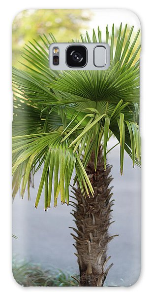Palm Tree Just There Galaxy Case