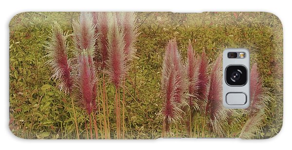 Pampas Grass Galaxy Case by Athala Carole Bruckner