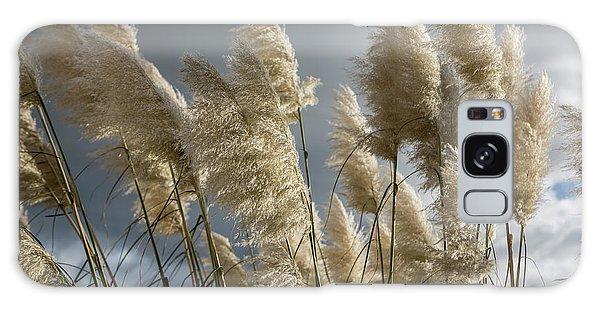 Pampas Grass Galaxy Case