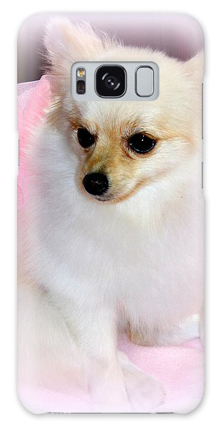 Pampered Pomeranian  Galaxy Case by Kathy  White