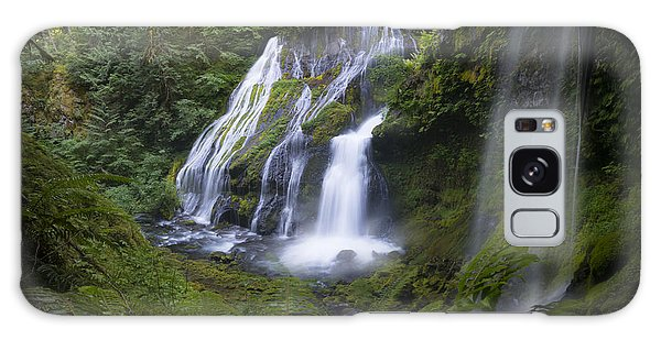 Panther Falls Galaxy Case