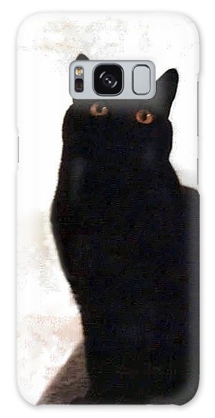 Panther The British Shorthair Cat Galaxy Case
