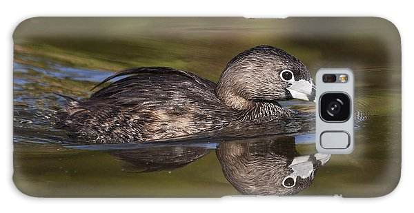Papago Park Grebe Galaxy Case