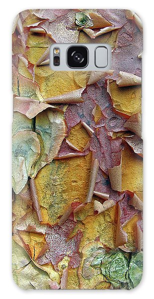 Paperbark Maple Tree Galaxy Case