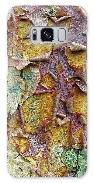 Paperbark Maple Tree Galaxy Case by Jessica Jenney