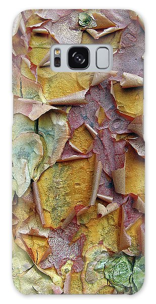 Paperbark Maple Tree Galaxy Case