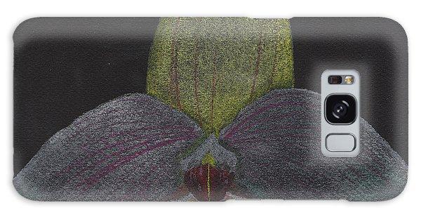 Paphiopedilum Mem. Orchid Galaxy Case