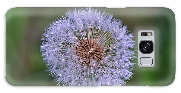 Parachute Club- Dandelion Gone To Seed Galaxy Case by David Porteus