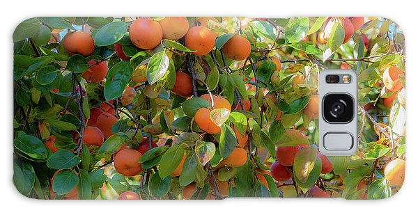 Paradise For Persimmons Galaxy Case