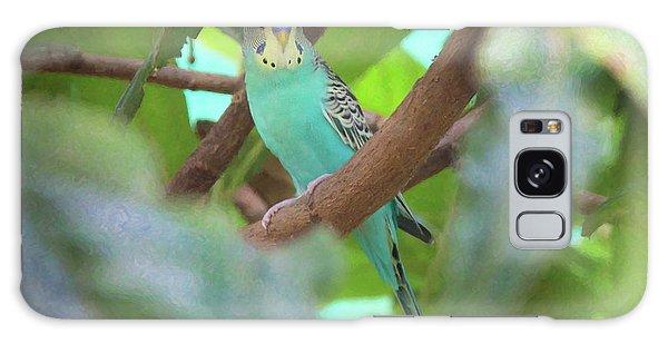 Parakeet Galaxy Case