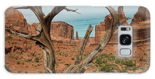 Galaxy Case featuring the photograph Park Avenue by Gary Lengyel