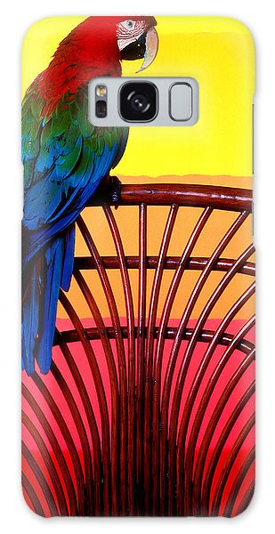 Macaw Galaxy Case - Parrot Sitting On Chair by Garry Gay