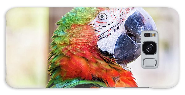 Parrot Galaxy Case by Stephanie Hayes