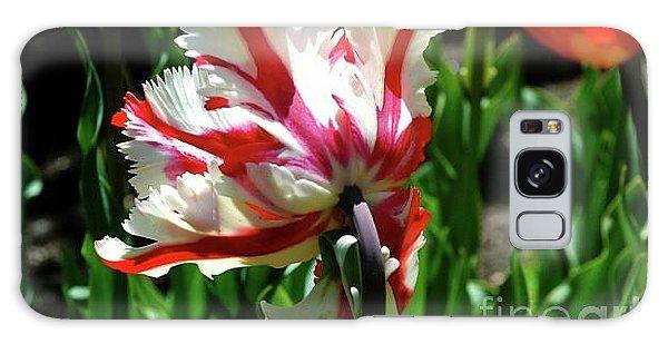 Parrot Tulip Galaxy Case