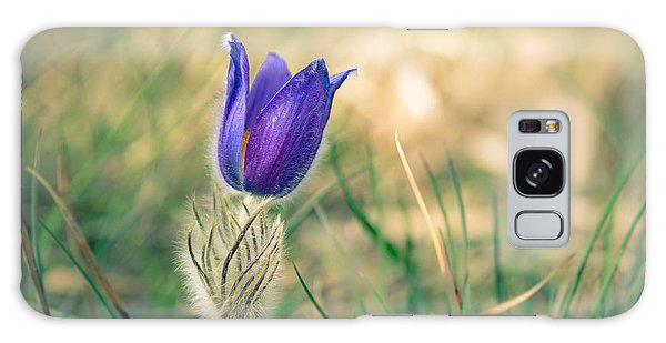 Pasque Flower Galaxy Case