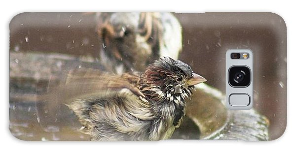 Galaxy Case - Pass The Towel Please: A House Sparrow by John Edwards
