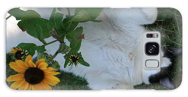 Passed Out Under The Daisies Galaxy Case by Marna Edwards Flavell