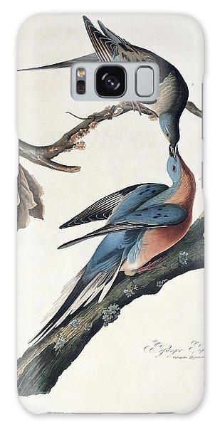 Pigeon Galaxy S8 Case - Passenger Pigeon by John James Audubon