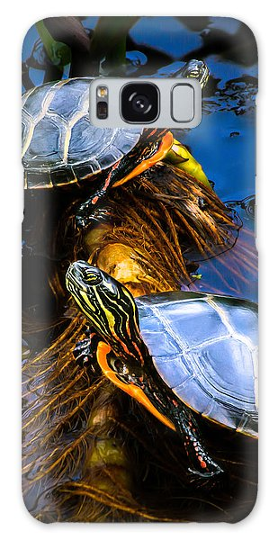 Passing The Day With A Friend Galaxy Case by Bob Orsillo