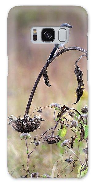 Pastoral Scene Bird On Sunflower Galaxy Case