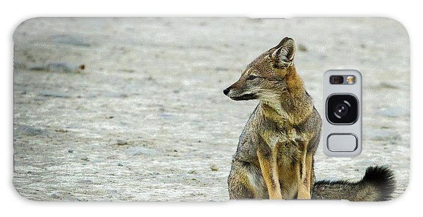 Patagonia Fox - Argentina Galaxy Case