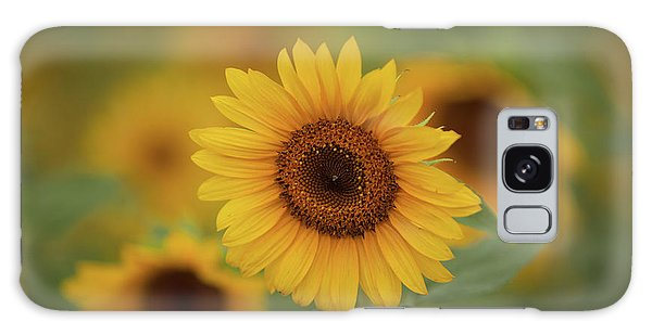 Patch Of Sunflowers Galaxy Case