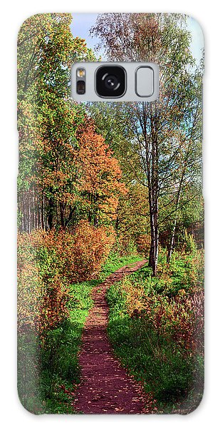 path in a beautiful country Park on a Sunny autumn day Galaxy Case