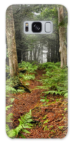 Path In The Ferns Galaxy Case