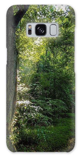 Path Lighting Galaxy Case