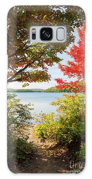 Framing Galaxy Case - Path To The Lake by Elena Elisseeva
